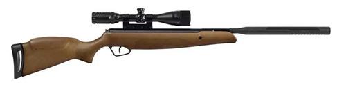 carabine à plombs bois