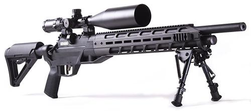 carabine armada pcp
